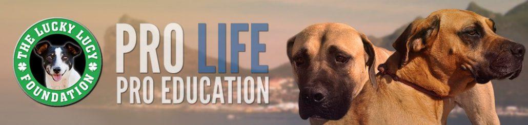 Pro Life Pro Education