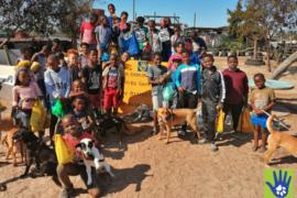 Children in Atlantis are becoming animal heroes