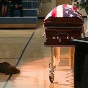 Pet Grieving
