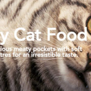 WHISKAS® Meaty Nugget - image