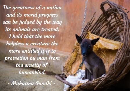 Mahatma Gundhi Quote