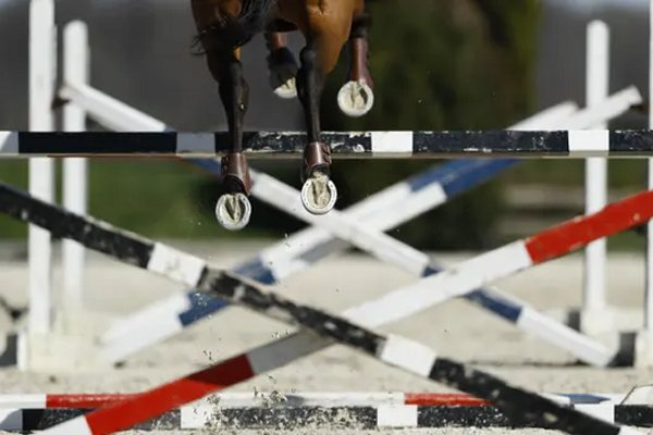 American showjumper given 10-year