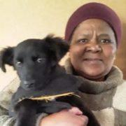 Miracle dog overcomes deadly canine parvovirus