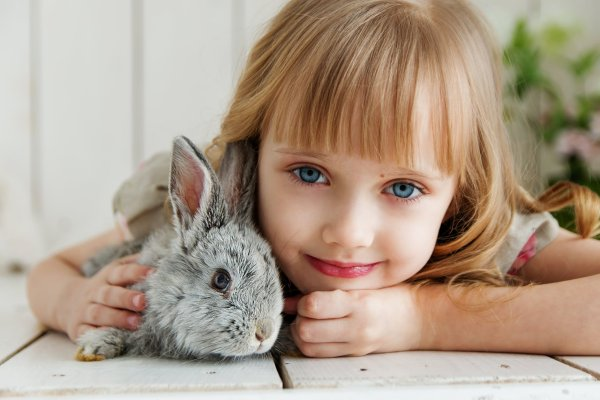 Welcoming Rabbits into your Home