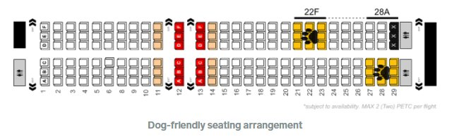 Dogs can now sit with passengers on a SA airline. But your dog needs to be tiny