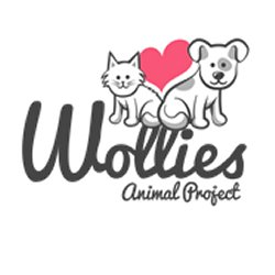 Wollies Animal Project