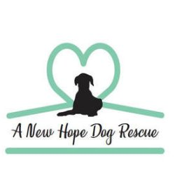 A New Hope Dog Rescue