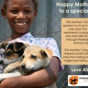 Mother's Day gifts reduce unwanted litters of puppies and kittens