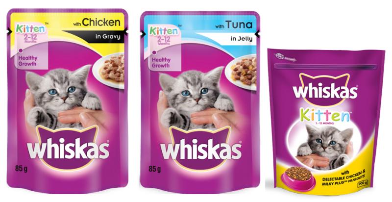 Feeding for kittens