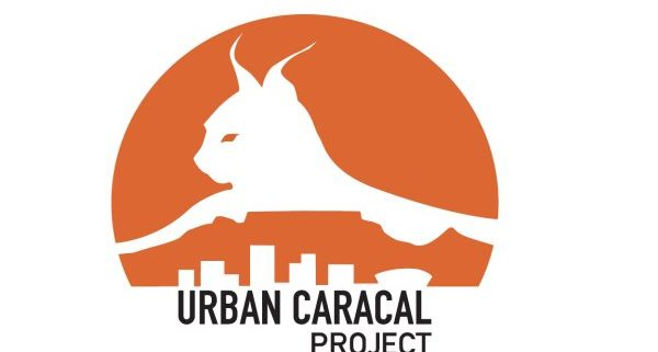 Snare Aware - Urban Caracal Project
