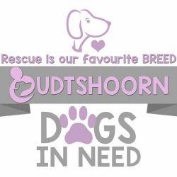 Oudtshoorn Dogs in Need
