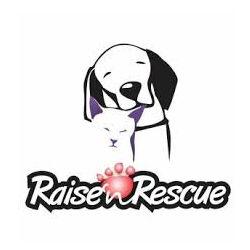 Raise 'n Rescue