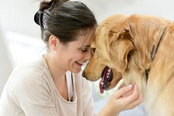 How a hug from your dog can drive the blues away