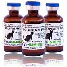Feline Infectious Peritonitis