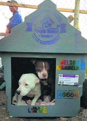 Saving distressed animals