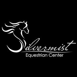 Silvermist Logo