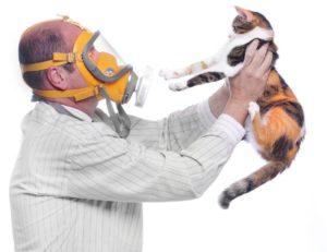 the-catnip-study